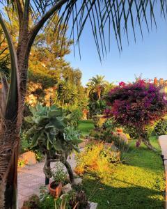 A garden outside Hotel Raffael