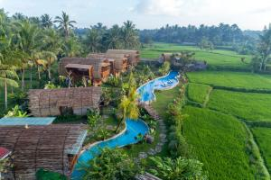 A view of the pool at Beehouse Dijiwa Ubud or nearby