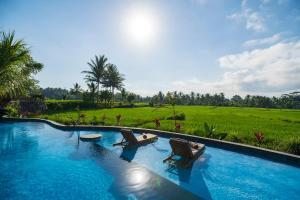 The swimming pool at or near Beehouse Dijiwa Ubud