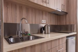A kitchen or kitchenette at Dionysos Hotel