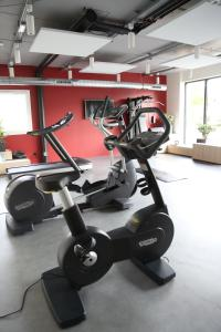 The fitness center and/or fitness facilities at ibis Styles Bâle-Mulhouse Aéroport