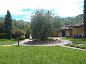 A garden outside Residence Montebello