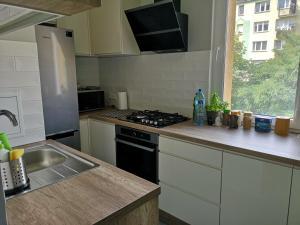 Kuchyň nebo kuchyňský kout v ubytování Apartament Anchor Przymorze