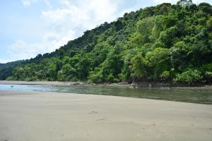 A beach at or near the inn
