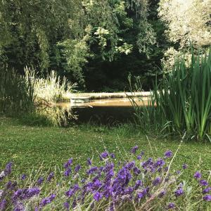 A garden outside Chambres d'hôtes Maison Efftermatten