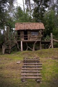 A garden outside Posada Ingapirca