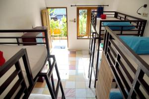 A bunk bed or bunk beds in a room at ViaVia Guesthouse