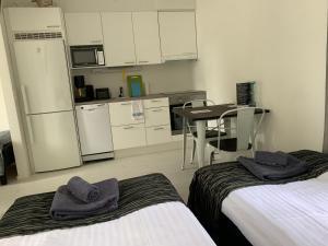 Majoituspaikan Green Door Apartments keittiö tai keittotila