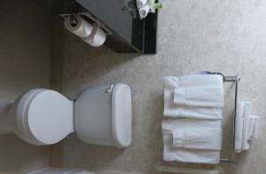 A bathroom at Holiday Inn Express Breaux Bridge, an IHG Hotel
