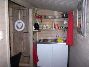 A kitchen or kitchenette at 't Ossenschot