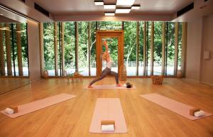 Het fitnesscentrum en/of fitnessfaciliteiten van Hotel Arima & Spa - Small Luxury Hotels