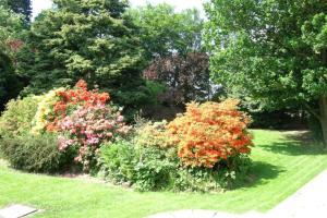 A garden outside The oaklands hotel