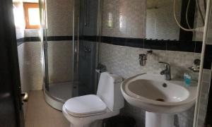 A bathroom at Hotel Kakhuri Ezo