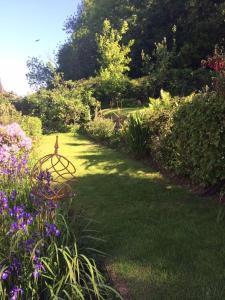 A garden outside Ashbury Bed & Breakfast