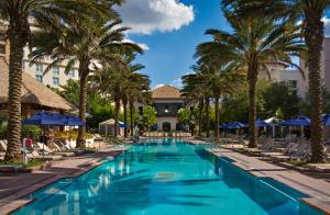 The swimming pool at or near Gaylord Palms Resort & Convention Center