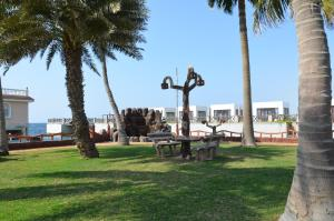 Um jardim em Al Murjan Beach Resort
