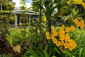 A garden outside Hale 'Ohu Bed & Breakfast