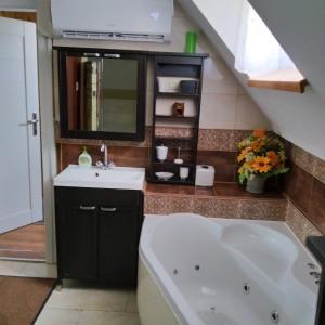 Koupelna v ubytování Rodinný Penzion Karin