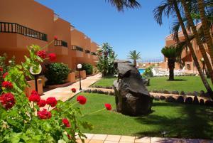 Een tuin van Complejo Las Tres Palmeras