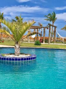 The swimming pool at or close to Monte Alegre Beach