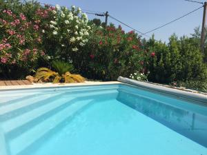 The swimming pool at or near Maset des Amandiers