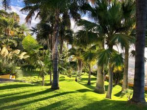 Jardín al aire libre en Hotel Tigaiga