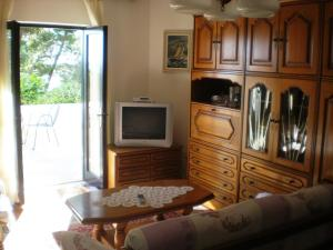 A television and/or entertainment center at Apartments and Rooms Rogosic