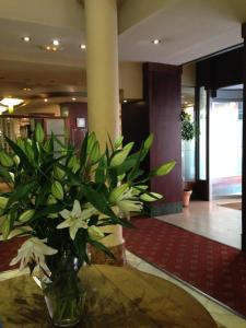 The lobby or reception area at Hotel Cervantes