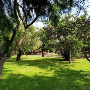 Jardín al aire libre en Petit Hotel Es figueral