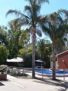 The swimming pool at or near Old Coach Motor Inn Echuca