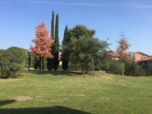 Giardino di Residence San Rossore