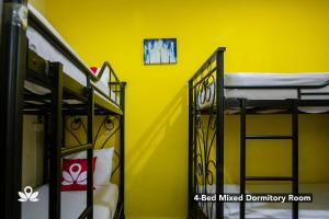 A bunk bed or bunk beds in a room at The Explorers Guesthouse and Hostel