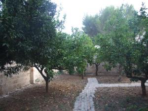 Giardino di Villa Gaia