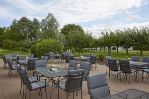 Ресторан / где поесть в H+ Hotel Frankfurt Airport West
