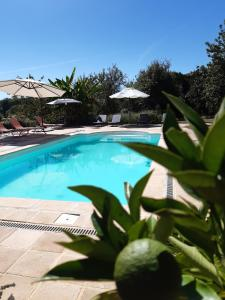 The swimming pool at or near Ferme de Lagrave