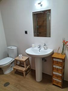A bathroom at Albergue Só Por Hoje