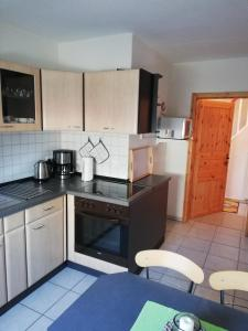 """A kitchen or kitchenette at """"Haus am Wald"""" in Possneck/Thuringen"""