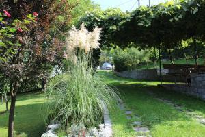 A garden outside Villa Garden