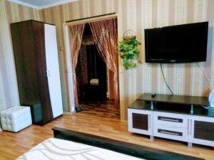 Телевизор и/или развлекательный центр в Apartments 9 Maya 35A