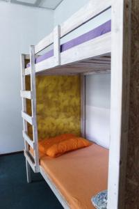 A bunk bed or bunk beds in a room at Fabrika Hostel Vilnius