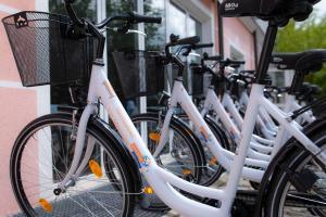 Radfahren an der Unterkunft Thermenhotel Vier Jahreszeiten oder in der Nähe