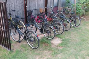 ゲストハウス おおみやけの敷地内または近くで楽しめるサイクリング