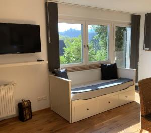 A television and/or entertainment center at Ferienwohnung Drachennest
