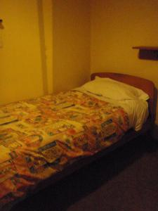 A bed or beds in a room at Hotel South Otago