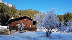 L'établissement Tornede Mountain Cottage en hiver