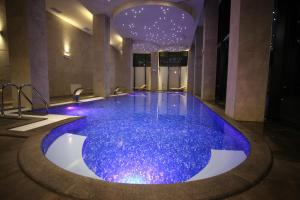المسبح في فندق ملاك ريجنسي أو بالجوار