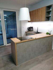 Kuchyňa alebo kuchynka v ubytovaní Green Bay Residence Apartment C3.03