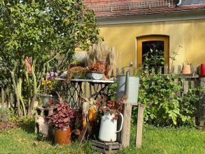 Ein Garten an der Unterkunft Pension | vonBartsch