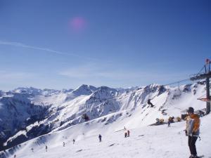 Ferienwohnung Schwabl during the winter