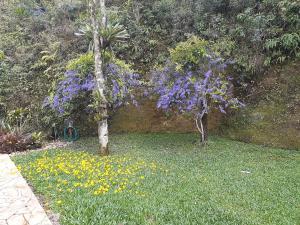 A garden outside Loft Aconchego da Serra